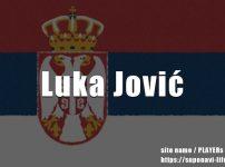 ルカ・ヨヴィッチのプレースタイル